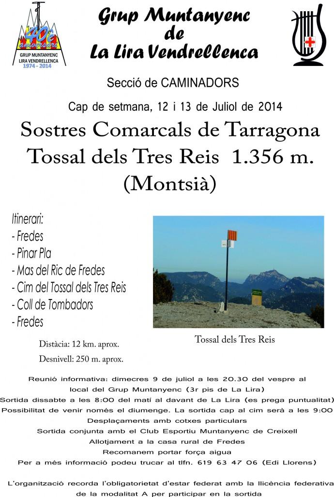 2014_07_13_Cartell_Sortida_Tossal_dels_Tres_Reis