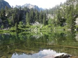 llac_gerber